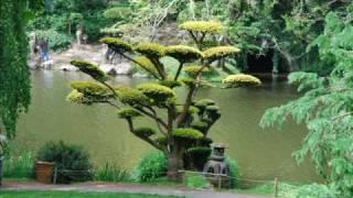 Mr le Photographe et le Jardin Japonais