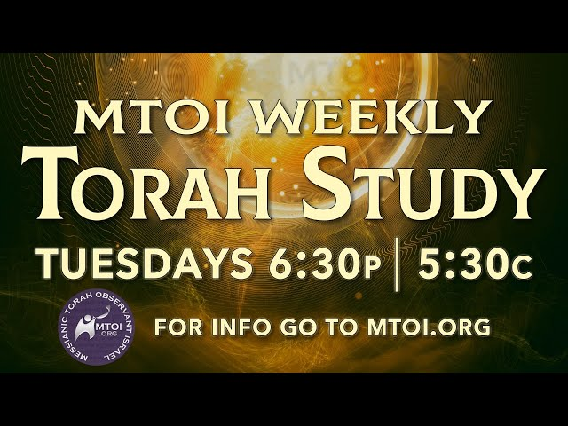 MTOI Weekly Torah Study   Toldot   Genesis 25:19 - 28:9
