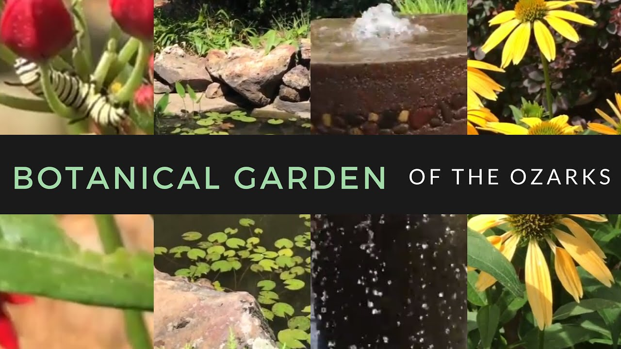 BOTANICAL GARDEN OF THE OZARKS | Things To Do In Fayetteville Arkansas |  Hutch House Family Vlog