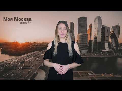 В Московском зоопарке можно будет вновь увидеть манула