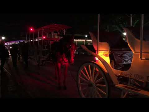 New Orleans Horse-Drawn Carriage Tours