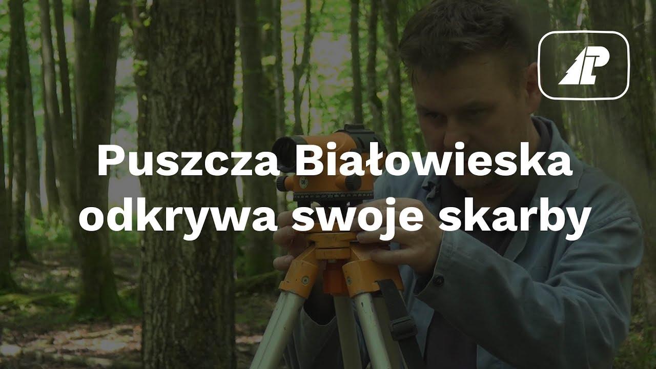 Puszcza Białowieska odkrywa swoje skarby