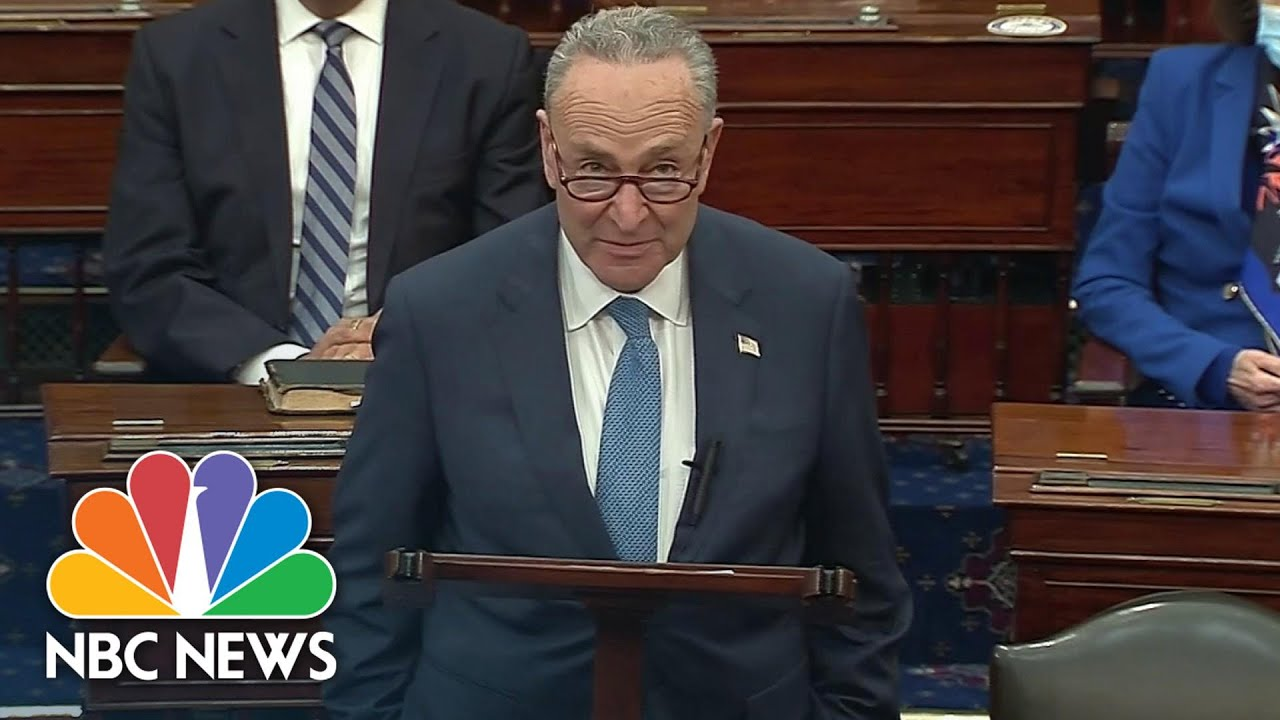 Download Schumer Gives First Speech As Senate Majority Leader: 'I Am Full Of Hope'   NBC News
