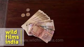 Indian currency - Notes and coins