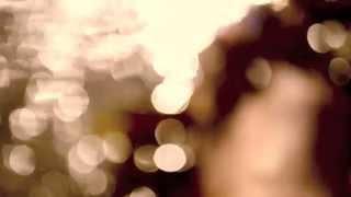 jaidene veda WANDERLUST (album teaser)