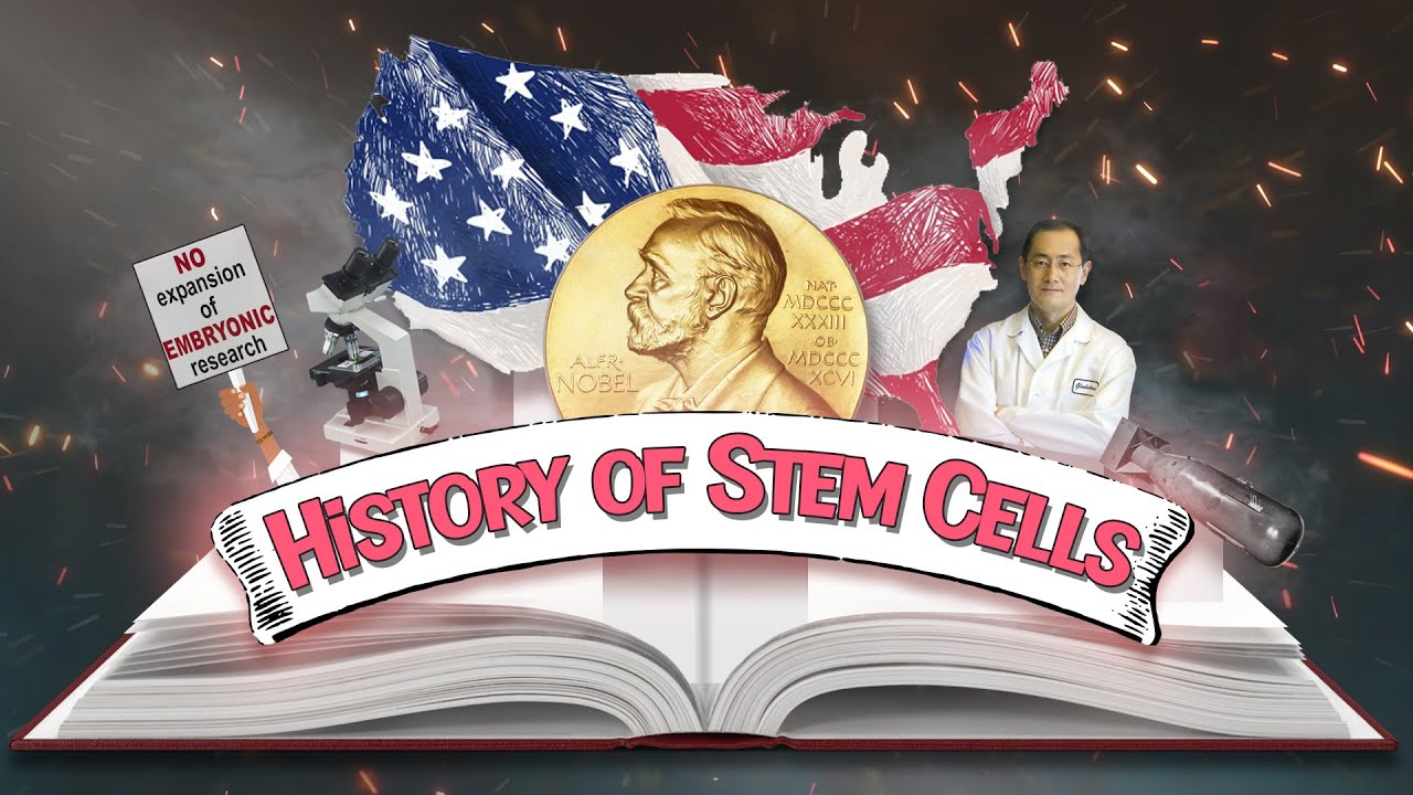 Stem Cells – A Brief History Through Time