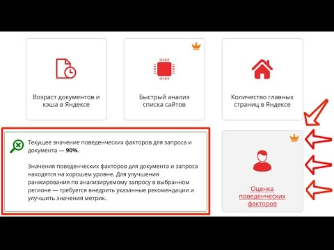 Поведенческие факторы яндекс Великие Луки видеокурс по продвижению интернет магазина