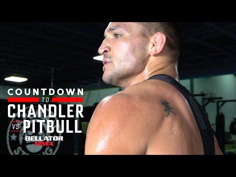 B221 Countdown   Michael Chandler - Week 1