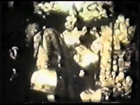 opium 1919
