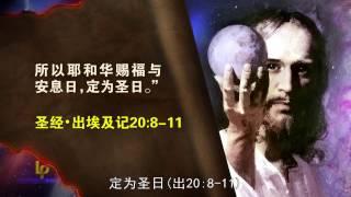 预言的地标 预言里程碑 圣经预言 第13辑 拜巴比伦 拜兽像 拜兽  Landmarks of Prophecy Chinese Verson 13