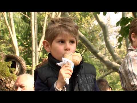 Western Balkan Mountains Movie