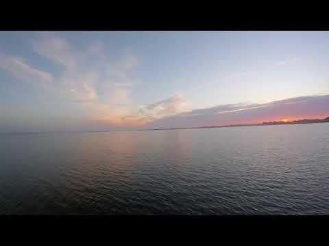 Rare footage of alligator on Lake Lewisville