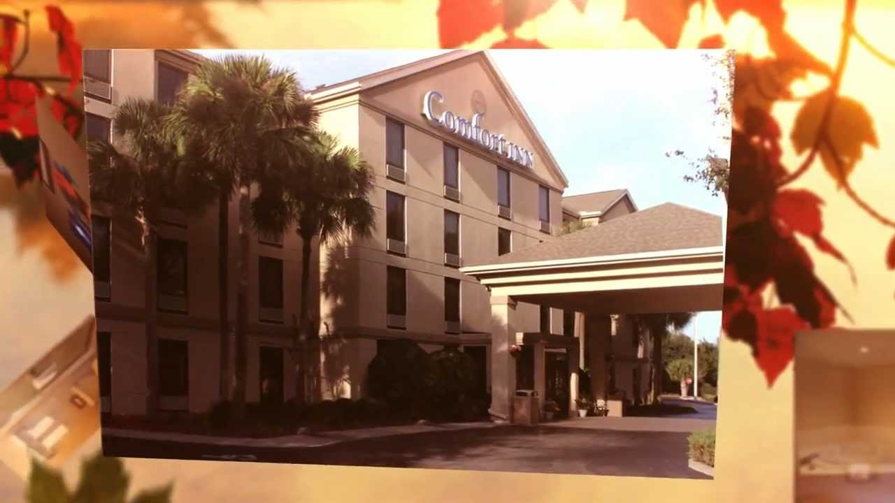 Pet Friendly Hotel Rooms Gainesville Florida