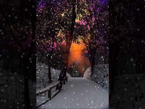 Snowfall !!!
