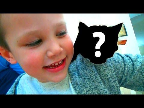 Найди кота Мурку с канала Mister Max и Miss Katy. Часть 1. Челлендж Угадай Блогера