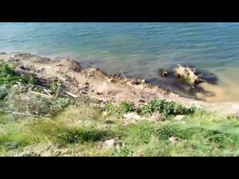 Ecoo E04 Lite Video Recording Sample 1280x720