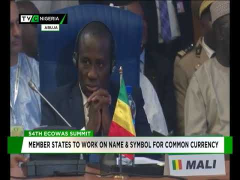 ECOWAS member states to work on name and symbol of common currency