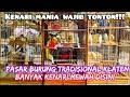 Kenari Mania Wajib Datang Ke Pasar Tradisional Ini Cek Harga Burung Kenari Terbaru   Mp3 - Mp4 Download