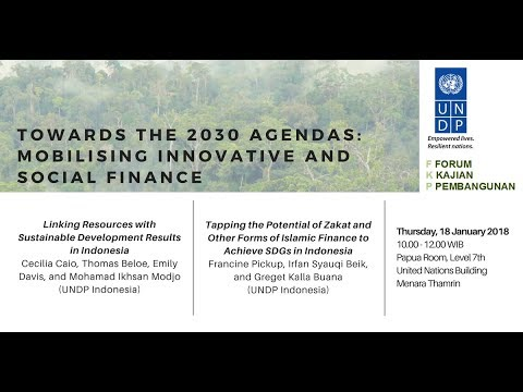 FKP 2018 01 18 - Towards the 2030 Agendas: Mobilising Innovative and Social Finance - Part One