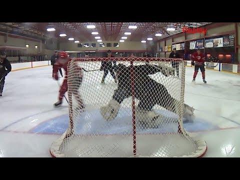 Edmonton Rec League Hockey-  Soviets V.S Myrmidons