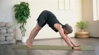 60 perces dinamikus Hatha jóga gyakorlás - 3. szint