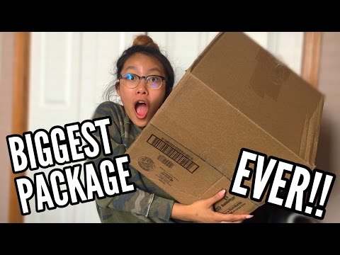 THE BIGGEST SQUISHY PACKAGE EVER!!! Huge JennaLynSquishies Package