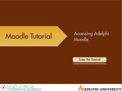 Accessing Adelphi Moodle