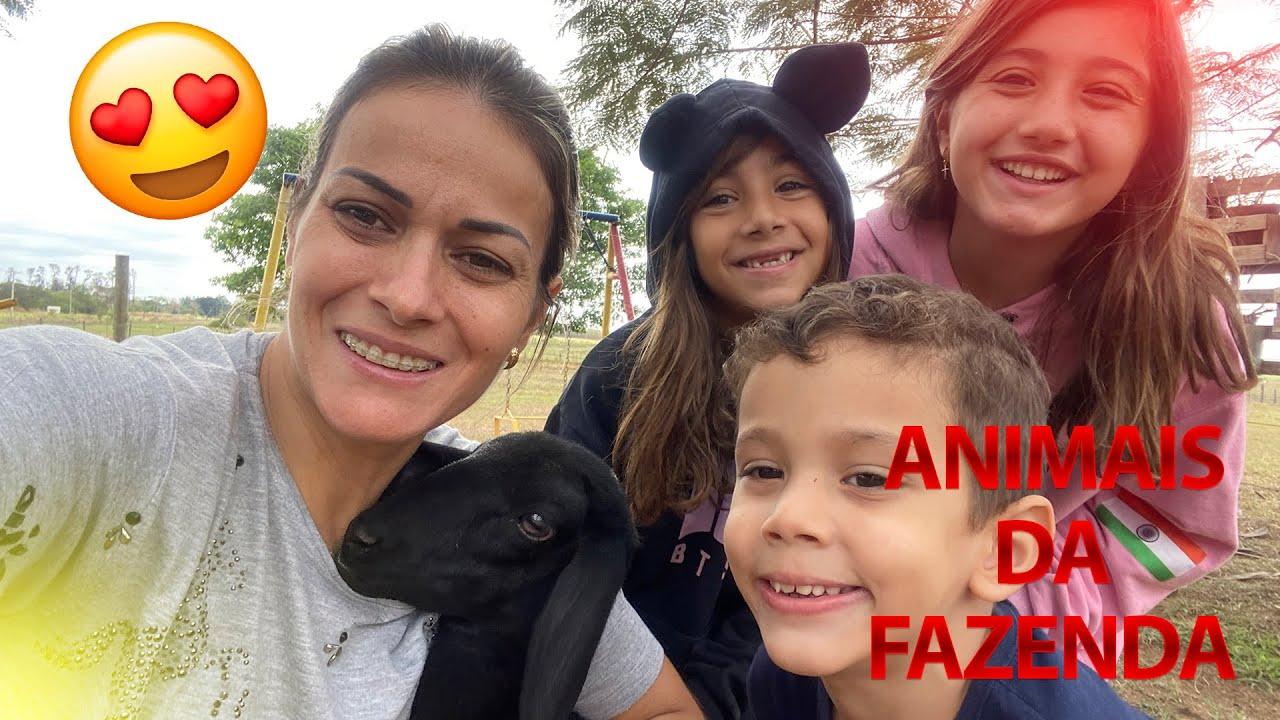 Download Os Animais Que Cuidamos na FAZENDA!