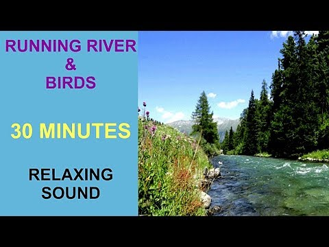 RUNNING RIVER & BIRDS   30 MIN FOR SLEEP STUDY RELAXATION MEDITATION