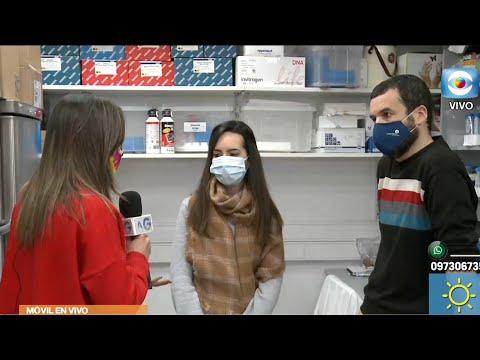 Instituto Pasteur desarrolló test serológicos para Covid–19
