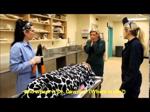 A Day in the Life of a Vet Student - AVC Class of 2017