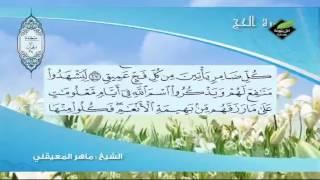 ماتيسر من سورة الحج للمقرئ الشيخ ماهر المعيقلي