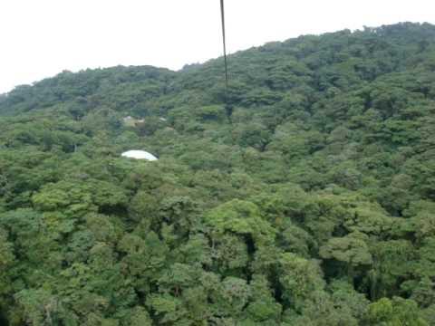 Zipline at Selvatura Canopy Tour in Monteverde Costa Rica 1 & Zipline at Selvatura Canopy Tour in Monteverde Costa Rica 1 - YouTube