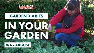 Gardening in August | WA | Bunnings Garden Diary