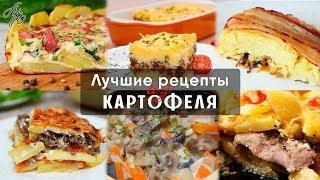 Подборка Потрясающих Рецептов из Картофеля! Лучшие Рецепты из Картофеля.