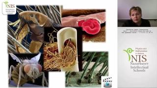 Онлайн урок по биологии - 06.11.2015 - НИШ ФМН АСТАНА Короткова И.Г.