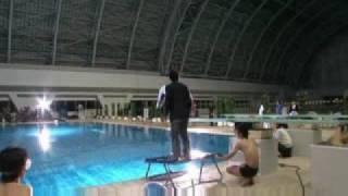 ネガティブハッピーチェーンソーエッヂでのプール撮影の様子.