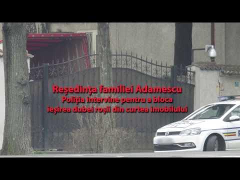 Milioanele lui Adamescu cărate cu duba - 11.03.2017