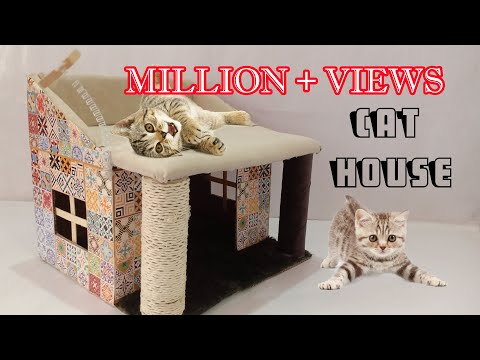 how to make amazing kitten | cat pet house from cardboard /Cat House / Kitten House