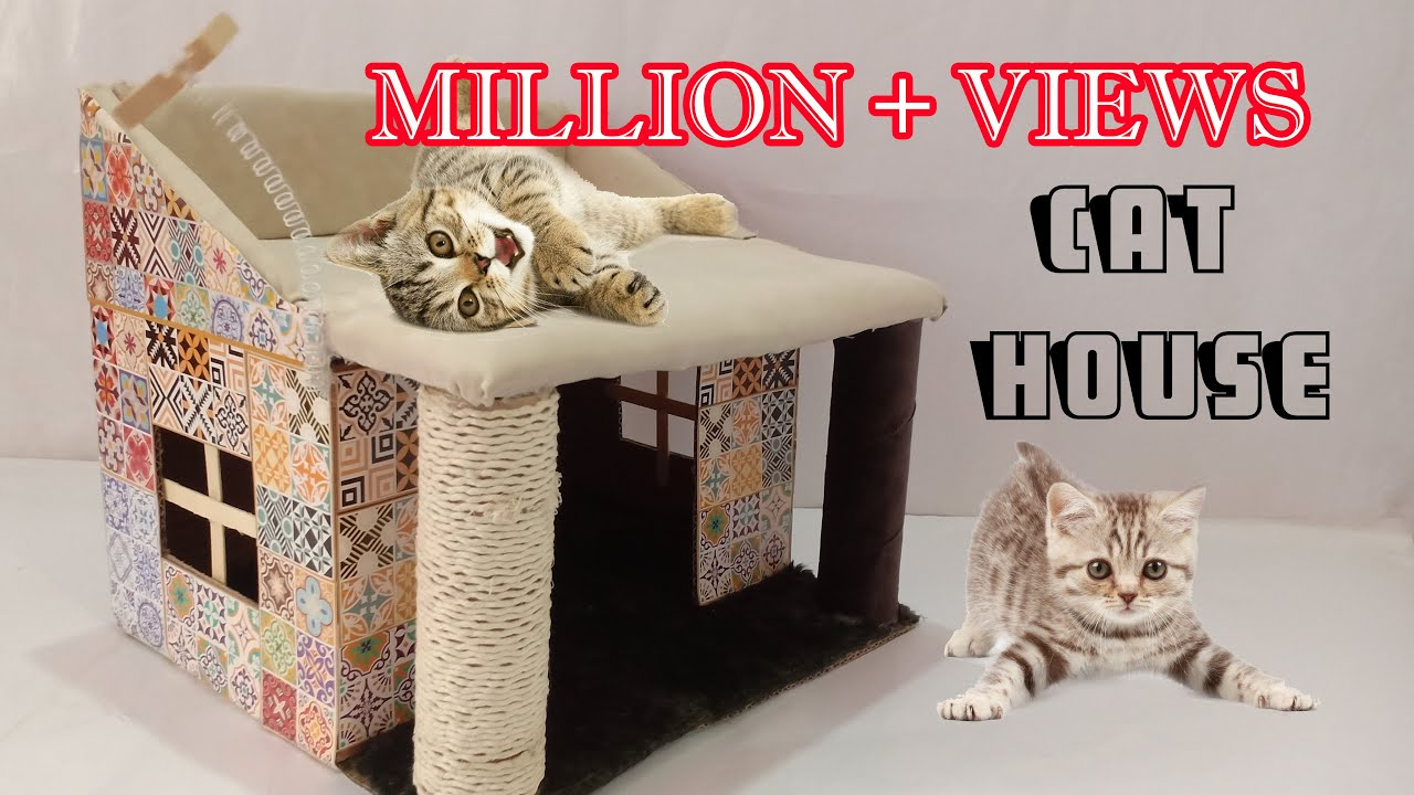 How To Make Amazing Kitten Cat Pet House From Cardboard Cat House Kitten House Youtube