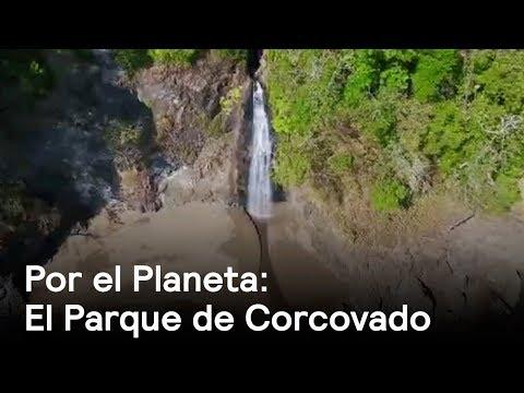 Por el Planeta: Parque de Corcovado, corazón de la biodiversidad en Costa Rica - Despierta con Loret