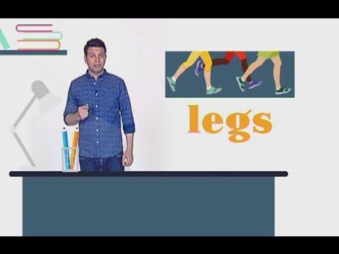 Minal - 24/02/2017 - Legs