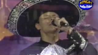 PEDRO FERNANDEZ SOLO TU.........1995