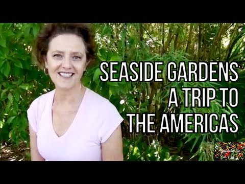 Seaside Gardens - A Trip To The Americas