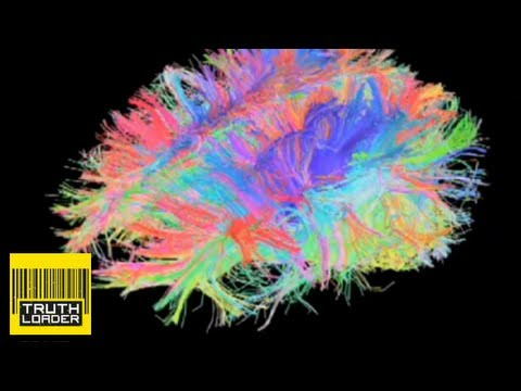 Mapping the human brain - Truthloader Investigates