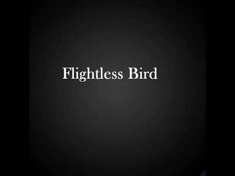 Flightless Bird, American Mouth German Lyrics