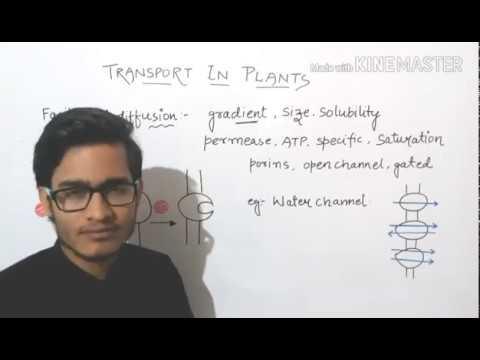 Facilitated diffusion detailed/aquaporins/uniport/symport/antiport.