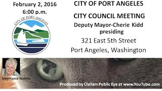 2016 02 02 Port Angeles City Council Meeting Deputy Mayor Cherie Kidd Presiding