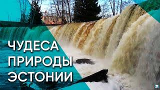 Водопады Эстонии — Кейла, Ягала, Валасте | Эстония