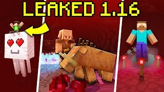 We LEAKED the Nether Update for Minecraft 1.16!?